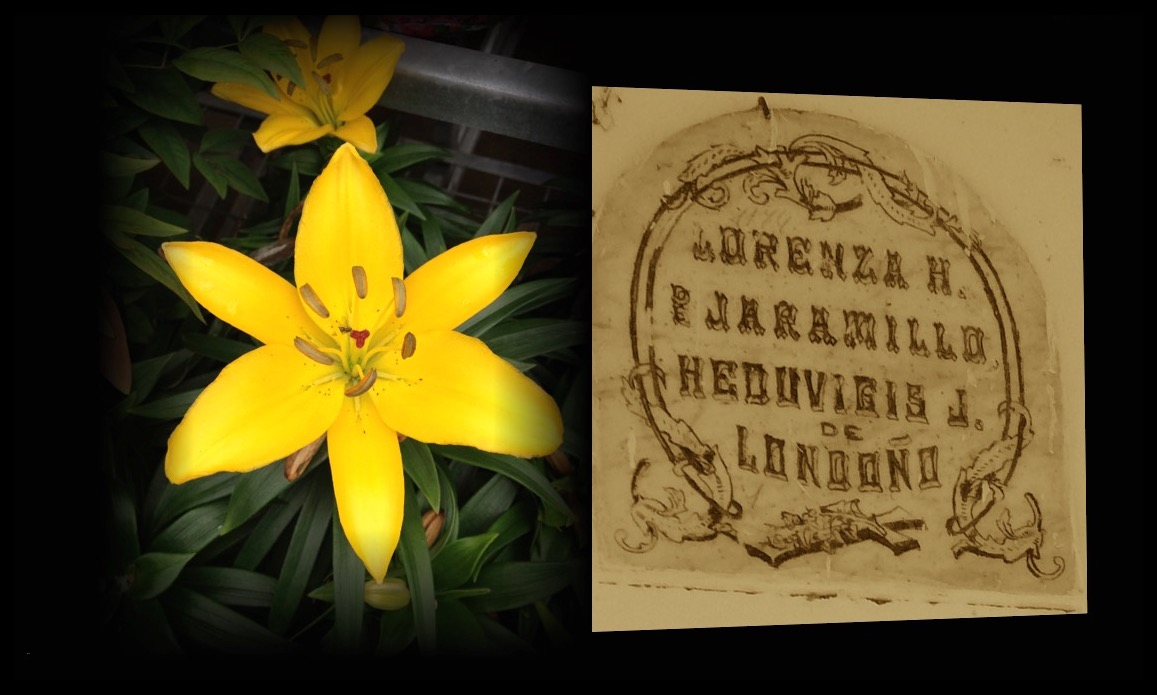 Lorenza H. de Jaramillo. y Heduvigis J. De Londoño