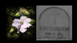 Agapito Echeverri.