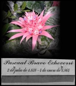 Pascual Bravo Echeverri.