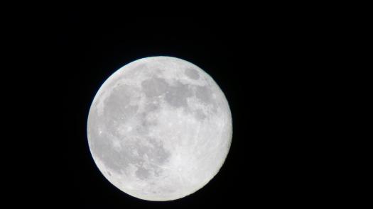 Luna- Aug 10-14-binocular